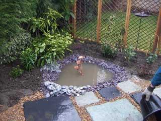 The garden 2006