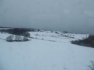 Fields and fields of undisturbed snow
