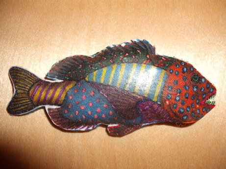 My little multicoloured fish!