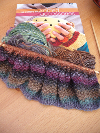 seed beret 2