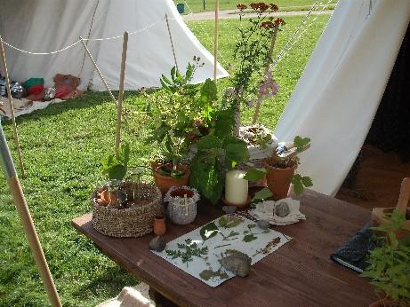 Bolsover - herbs 2