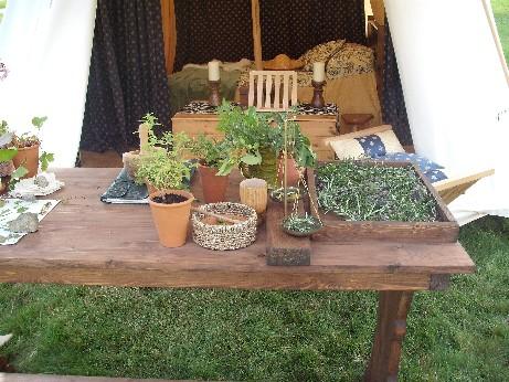 Bolsover - herbs
