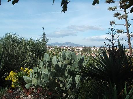 Spain landscape 1