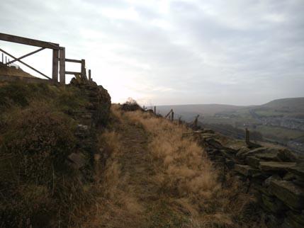 Nov walk 5