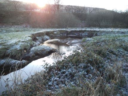 Dec-winter walk