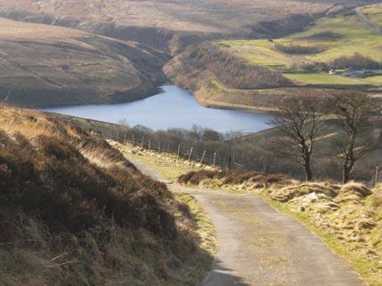 Binn Moor walk 5