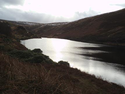 Feb walk reservoir