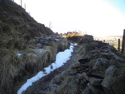Feb walk snow path