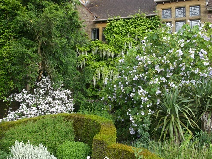 NT Holiday June 2014 - Knightshayes garden 1