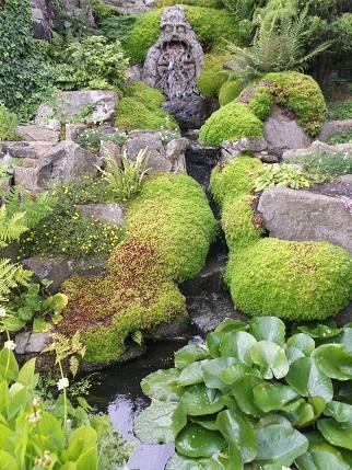 Marsden Open gardens 2