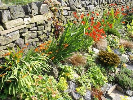 Marsden Open gardens 25