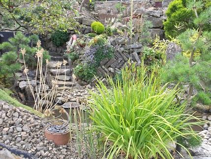Marsden Open gardens 7