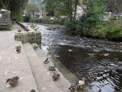Hebden Bridge - river
