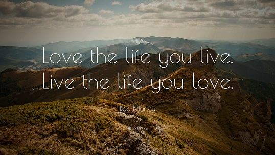 Love the life you live quote-small