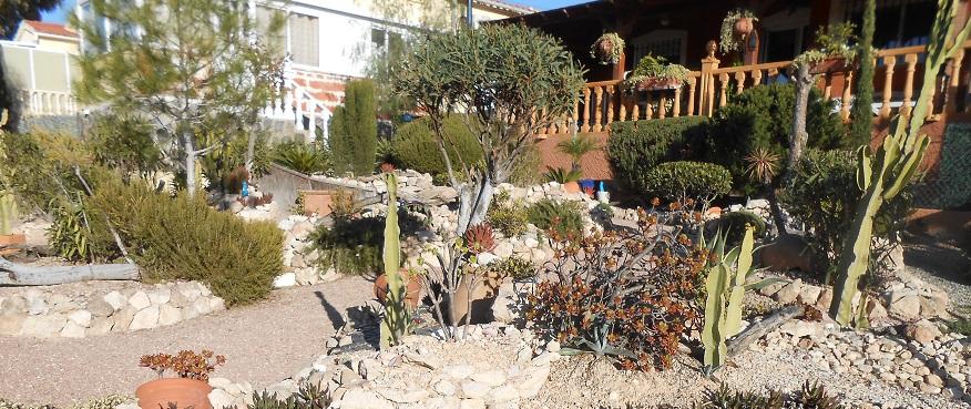 Spain - gardens 6