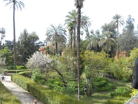 Seville Alcazar gardens 3