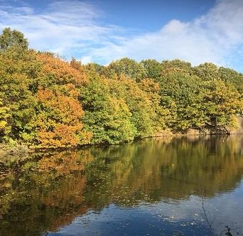 Marden Autumn 2
