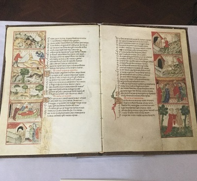 IMC 11 Manuscript