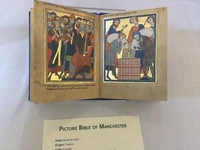 IMC 13 Manuscript
