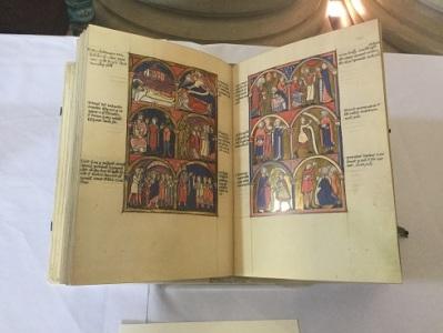 IMC 15 Manuscript