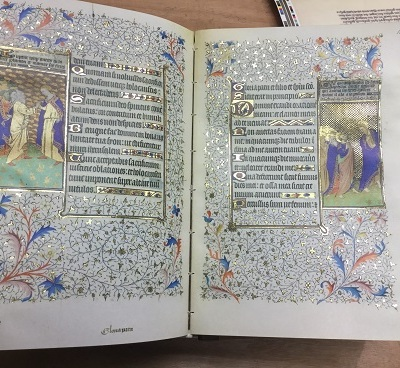 IMC 5 Manuscript