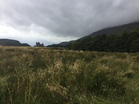 Scotland 1 - Kilchurn