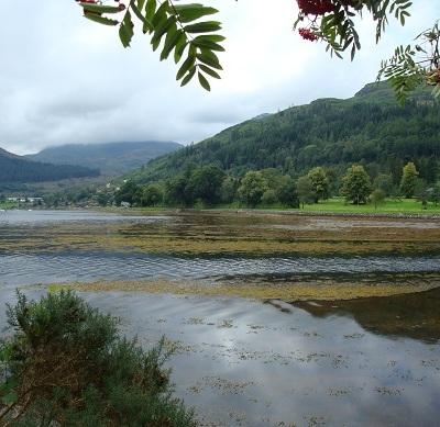 Scotland Lochgoilhead 12