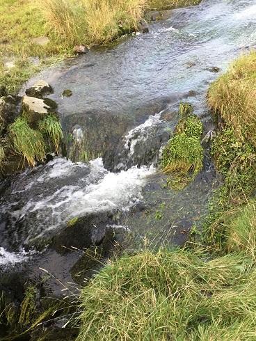 Dales waterfalls 12