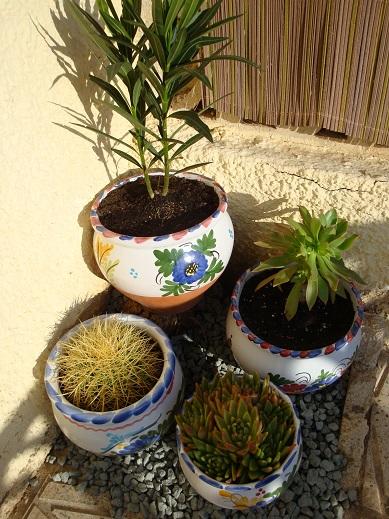 Spain terrace 2
