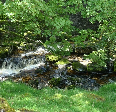 Dales waterfalls 2