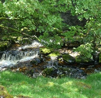 Dales waterfalls 2