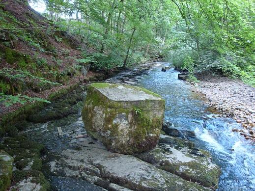 Dales waterfalls 26