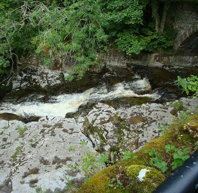 Dales waterfalls 39